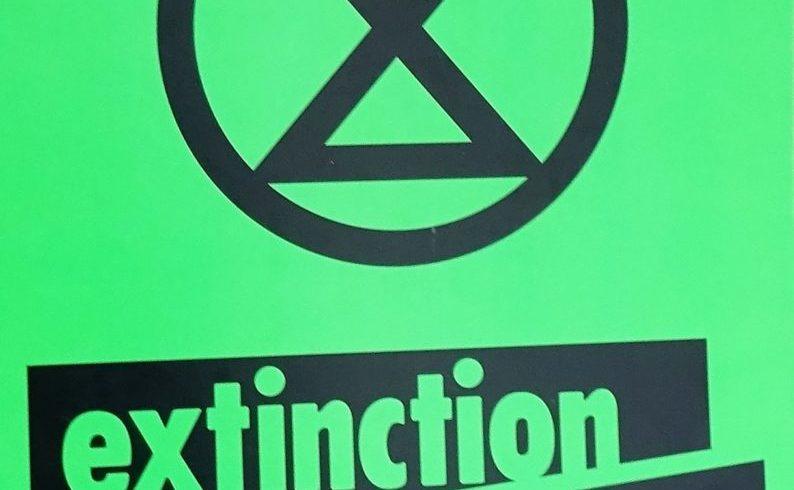 Comunicato da Extinction Rebellion Torino