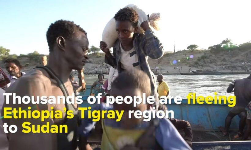 Crisi umanitaria in Etiopia. Intervento di Augusta Castronovo e appello