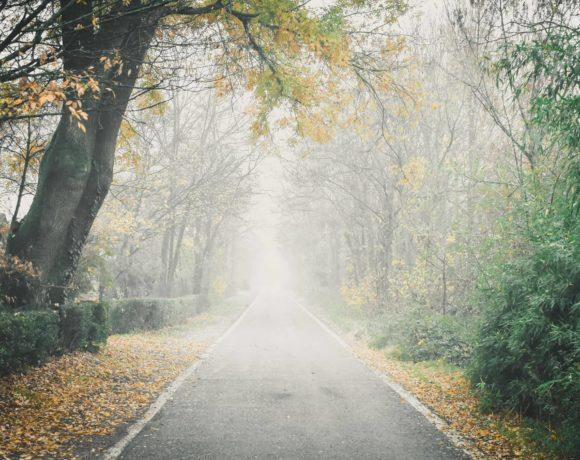 La nebbia in via dei Quercioli